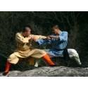 Kung Fu / Wu-Shu / Sanda